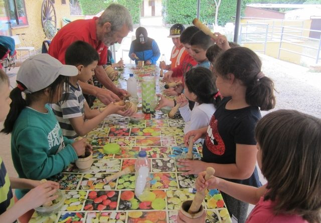 Excursión 2 de primaria a Moncayo